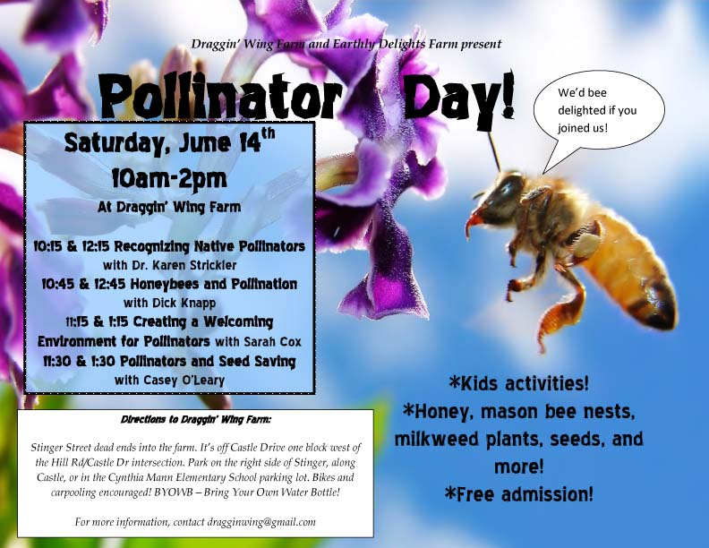 pollinator day flier for reals copy
