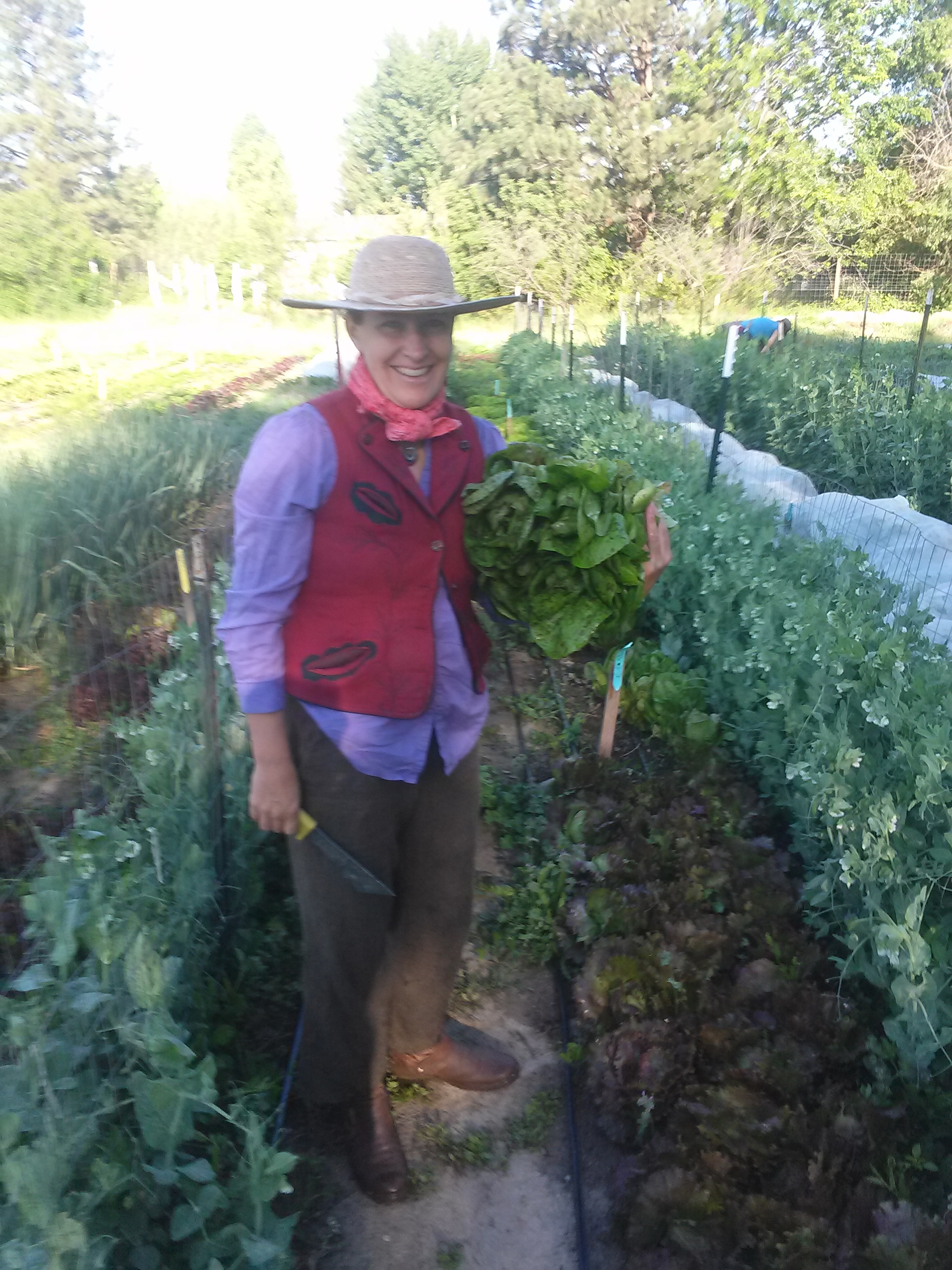 internships earthly delights farm this equitable exchange means you don t have to pay tuition and you don t get paid for